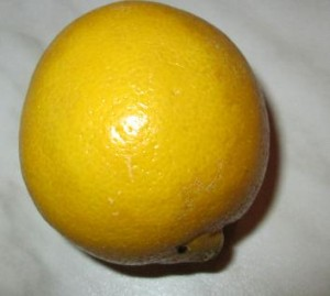 citrón