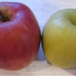 Jablko – liek na omladnutie