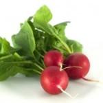 Skvelé učinky reďkovky pre zdravie a chudnutie
