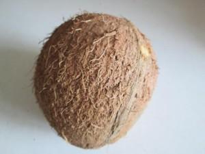 kokos potravina strava bio
