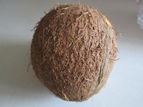kokos učinky