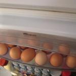 Vajca sú zdravé a výživné