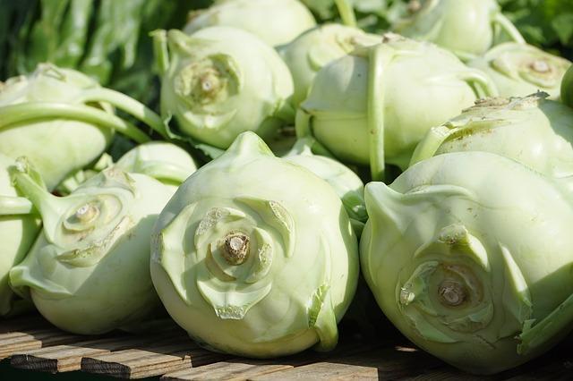 kalerab pre zdravie zdravy recept pestovanie