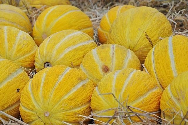 skladovanie zlteho melonu zdrave recepty salaty