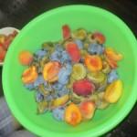 Ako sme robili detskú výživu zo sliviek a broskýň