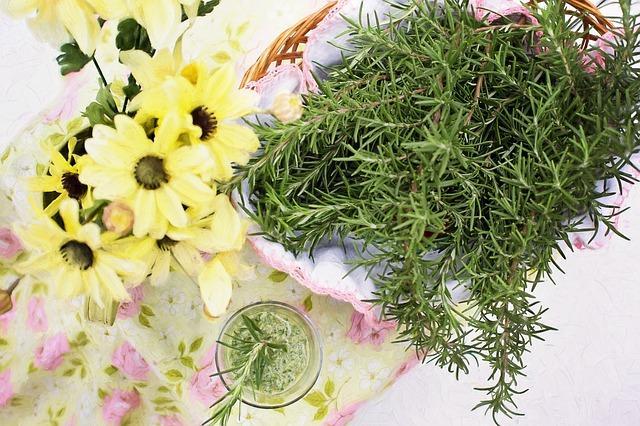 rozmarin bylinky na dochutenie jedla