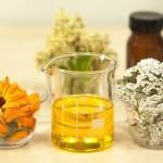 Liečivé rastliny a ich prínos pre naše zdravie